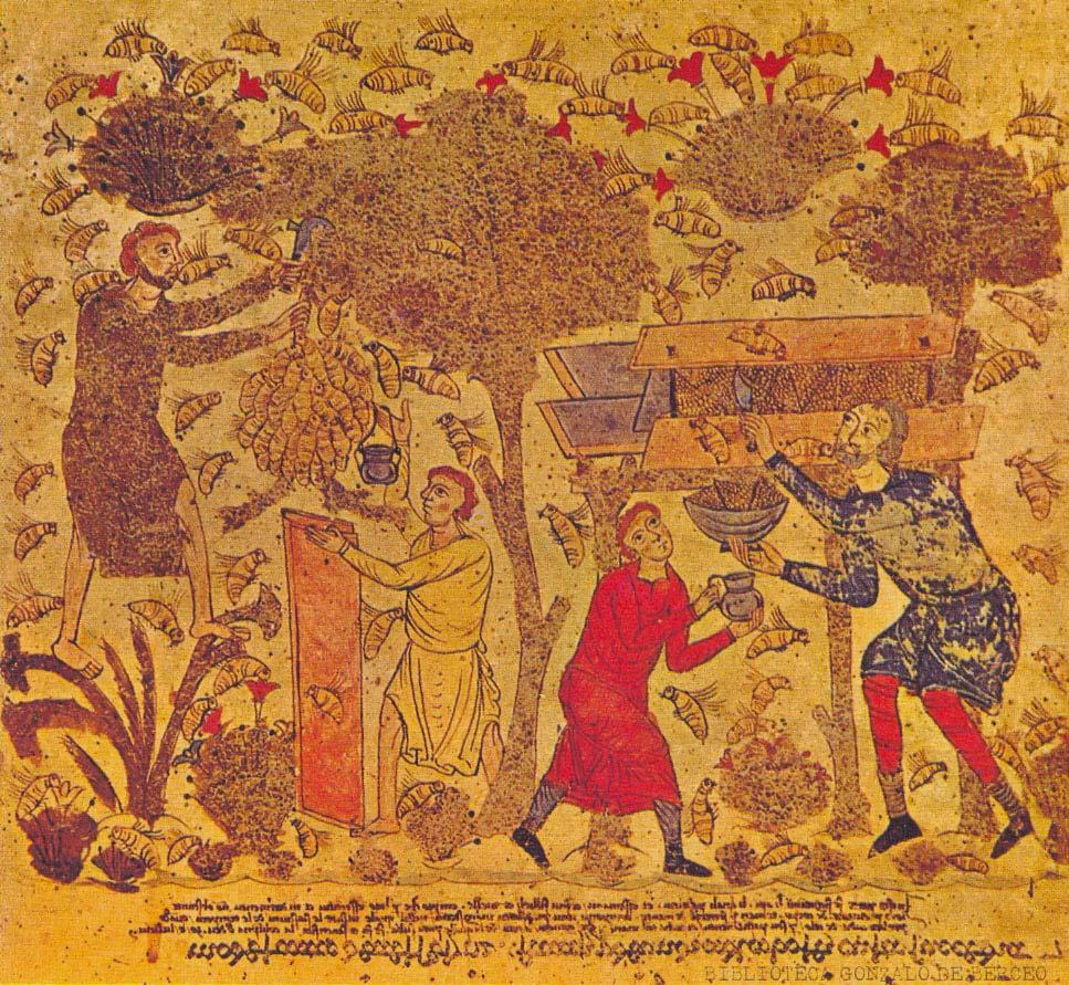 História da Apicultura - Do egito até hoje